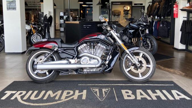 Harley Davidson, V-Rod Muscle, 1.250 cc, custom, potência, 2015