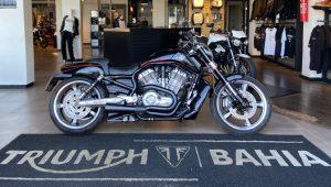 Harley-Davidson V-Rod Muscle, 2012/2013, 1.250 cc, custom